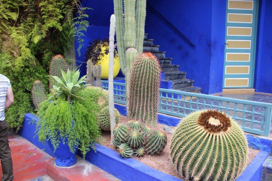 Jardin Majorelle Maroc