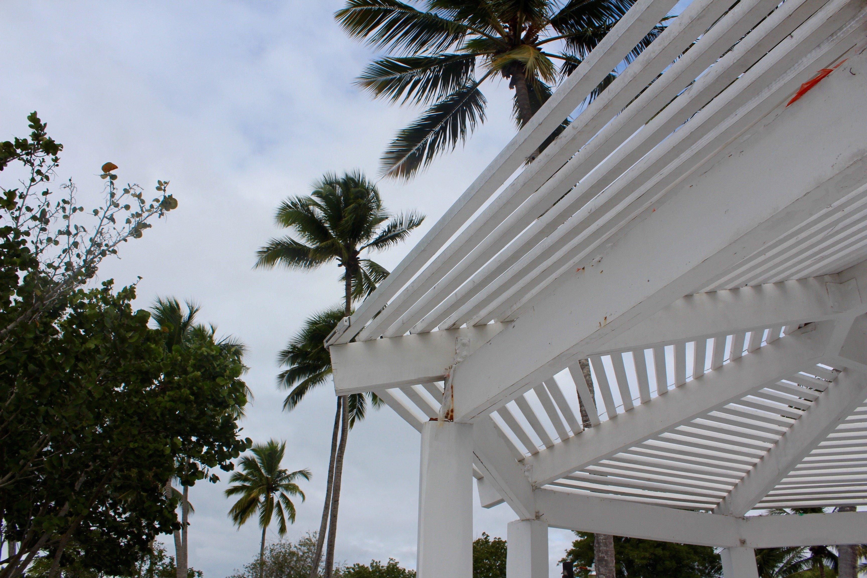 Beach Bayahibe Dominicana