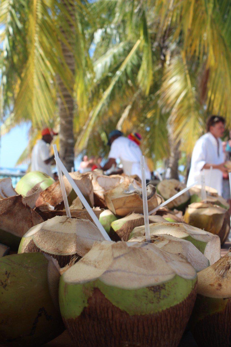 Caribbean Coco