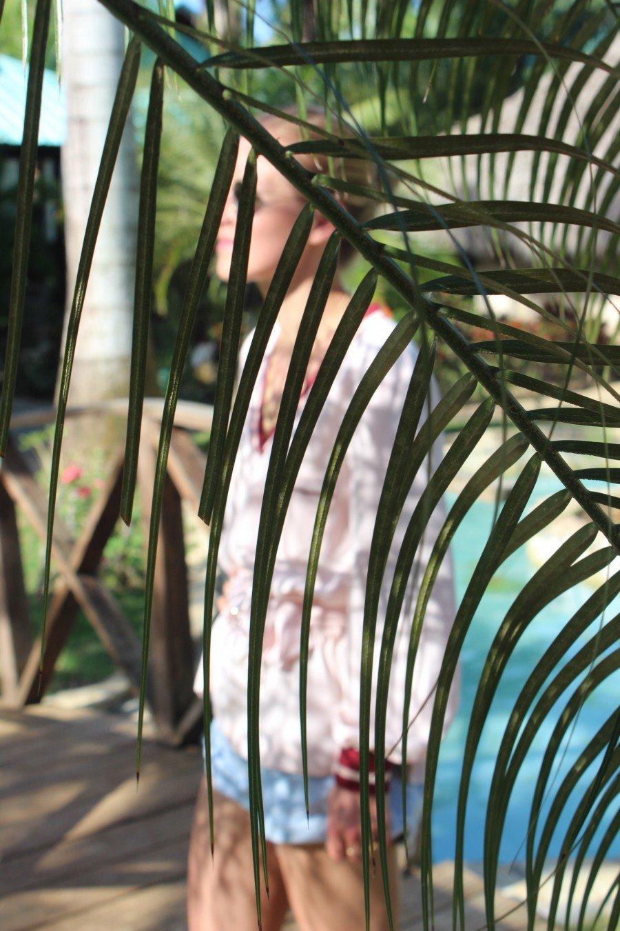 flamingo farbe blogger