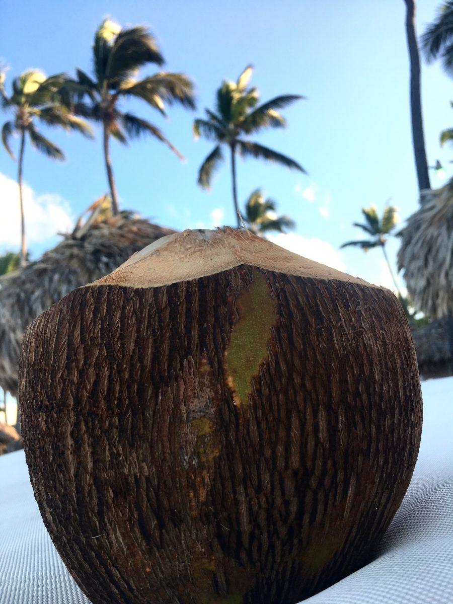 coco nuts fresh