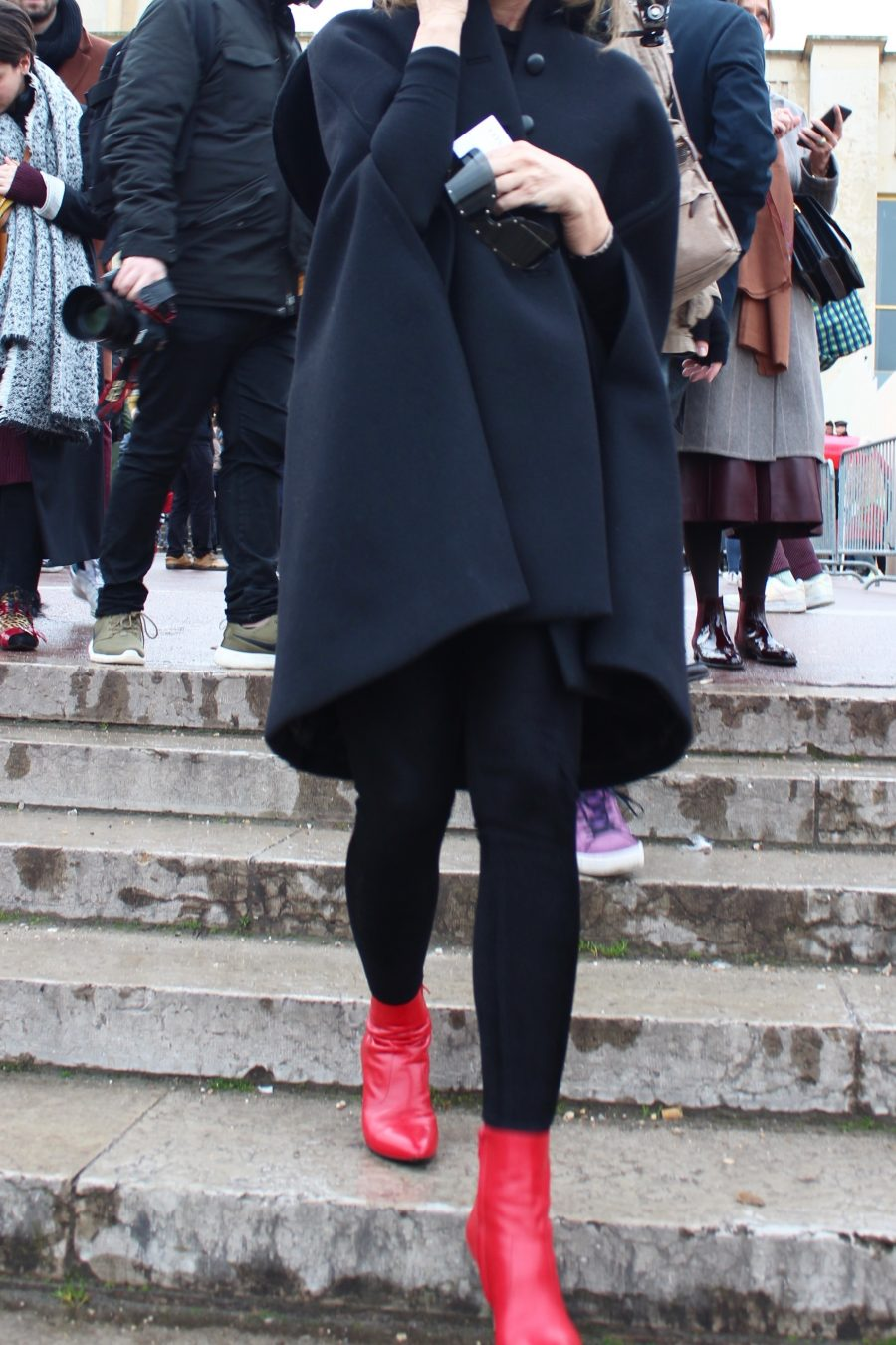 Paris Fashion Week AH17 Street Style Carine Roitfeld